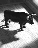symbolic representation of a bull market